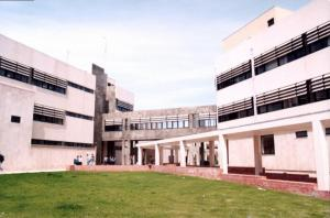 5-FTDAO (1)