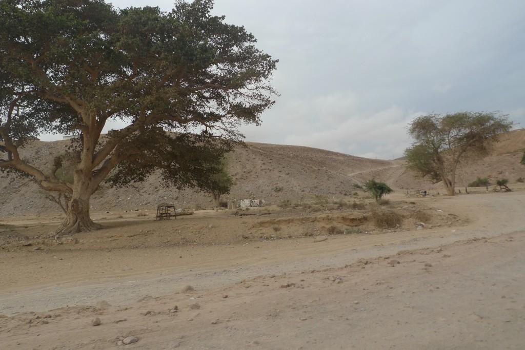 Deserto do Namibe em Angola, janeiro de 2014 (autoria de Rui Neves)